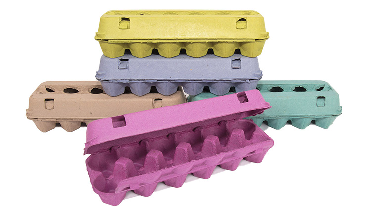 Paper Egg Cartons -5 pack